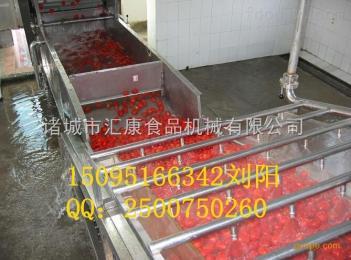 QX-6米多功能自动清洗机  气泡翻浪清洗机  根茎叶菜清洗机