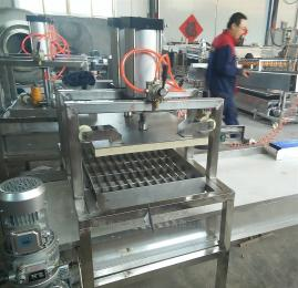 QK-200年糕切块机,千叶豆腐切片机成型机