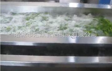 QX-6米茶叶清洗机*翻浪清洗机*臭氧消毒清洗机*小白菜清洗机