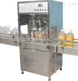 中小型食用油生产线设备