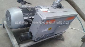 DZ-600型竹笋真空包装机|笋尖全自动真空包装设备