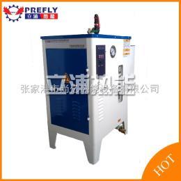 LDR厂家直销石锅鱼专用电加热蒸汽锅炉