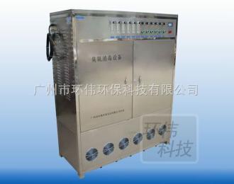 HW-ET工厂排污水处理臭氧发生器