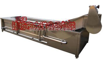 CQX叶菜清洗机,气浪式蔬菜清洗机