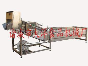 CQX-400果蔬清洗消毒机,山楂清洗风干线