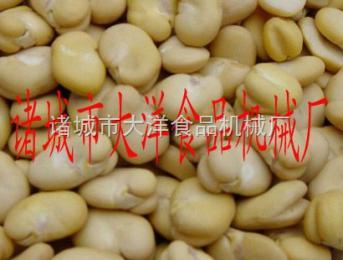 HTP脱皮后的蚕豆,蚕豆脱皮机