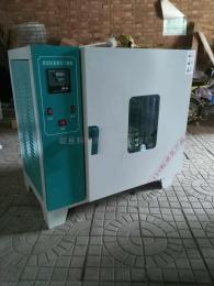 电热鼓风干燥箱101-1-2