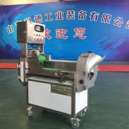 SQ-100全自动多功能切菜机