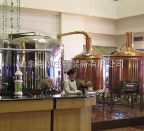 200- 2000精酿啤酒屋 啤酒设备 精酿啤酒设备