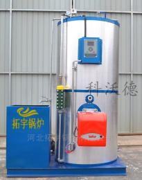 LSS0.3生物制藥化工醫療食品蒸汽發生器