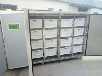 DS-500全自动豆芽机使用方法价格和生豆芽的技术
