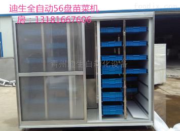 DS-M200新一代大型商用56盘日产200斤彩钢苗菜机