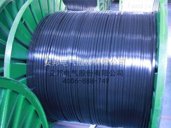 DWL-JF2伴熱帶DWL-JF2低溫防腐加強型化工用伴熱電纜