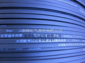 DXW-J2-380V甘肃供水管道防冻DXW-J2-380V低温加强型电伴热带