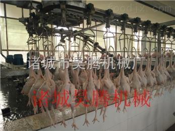 鸡鸭鹅宰杀设备新型鸡鸭鹅屠宰设备
