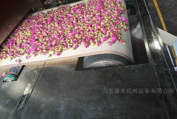 kl-40-6全自动菊花锁色干燥设备