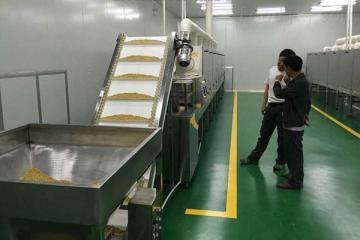 對蝦烘熟隧道爐,微波大豆烘熟隧道爐,微波烘熟隧道爐