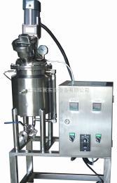 不锈钢实验型全自动发酵罐