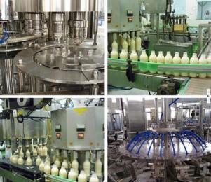 酸奶设备加工厂家