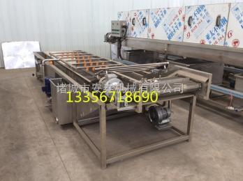 4000mm供应4000型蔬菜清洗机