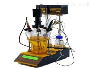 兰默达(LAMBDA) 实验室发酵罐