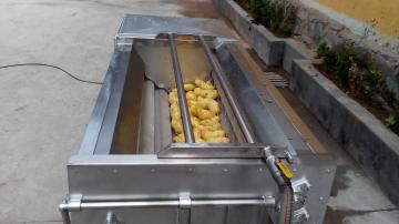 QXJ-800小型土豆红薯清洗去皮机