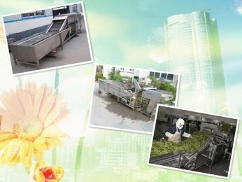 QXJ-7000*凈菜生產線制造商