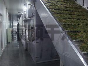 常州枸杞脫水專用干燥機