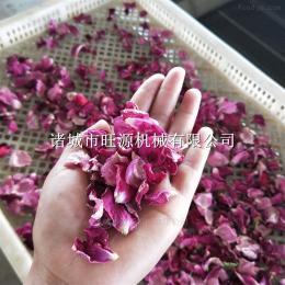 鮮花花瓣烘干箱