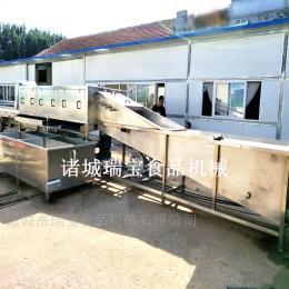 XJ-6000瑞宝XJ-6000型生姜清洗机