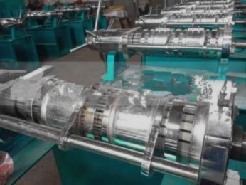 上海食品机械压榨油机