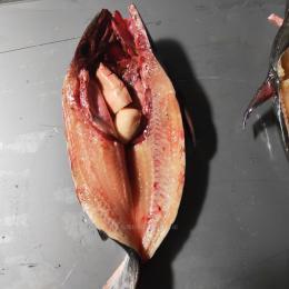 巴沙魚開背開肚巴沙魚自動開背機