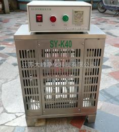 DFS-K-10B内置式臭氧发生器