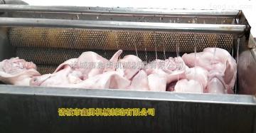 XY-12生豬清洗設備 毛輥豬頭清洗機 鑫勇制造