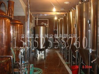 ZM-200L自酿啤酒设备  精酿啤酒机  家用酿酒设备