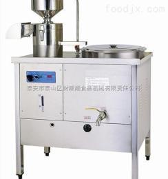 css-100全自动豆腐干机家用小型豆腐干机财顺顺厂家热销招盟