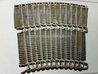 WD-06纸箱装啤酒网带链输送机配件-链条式网带