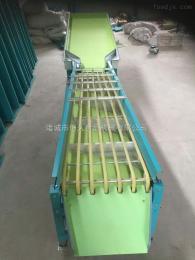 HJ-XG海南青柠檬筛选机
