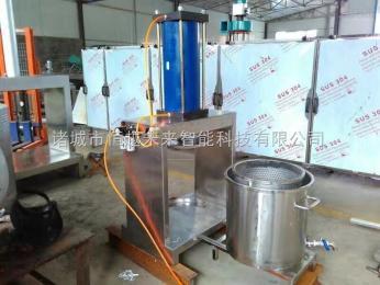 恒越未来HYWL-400醋泡贡菜条压榨脱水机