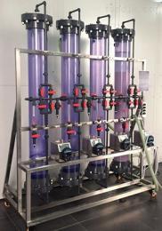 Newsep-83银杏叶提取物分离纯化/中药提取液纯化/欣赛科技连续离交连续离子交换工艺
