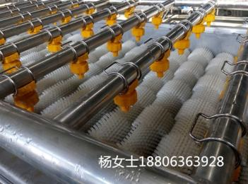 ty-10毛辊清洗机设备厂家定制