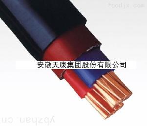 YJV0.6/1kV-2*70电力电缆
