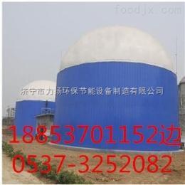 定制云南猪粪发酵设备厌氧发酵罐