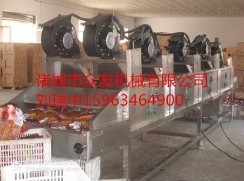 zy-600型桃子风干机桃子果蔬菜风干机-软包装风干机-翻转式蔬菜风干机