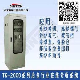 TK-2000型高炉转炉煤气在线分析系统