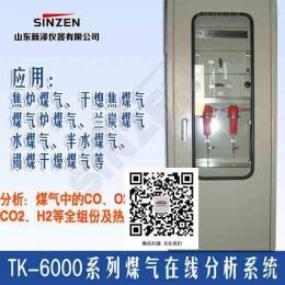 TK-6000焦炉煤气炉煤气电捕焦氧气分析系统