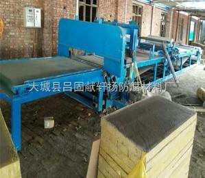 硅质岩棉板设备厂家 河北轩扬