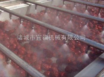 YQ-25型全自動大紅棗清洗機流水線