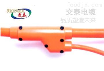 FZ-NG-A预分支电缆,预分支电缆型号