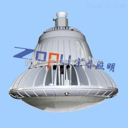 ZPB802LED防爆抗腐蚀泛光灯50W